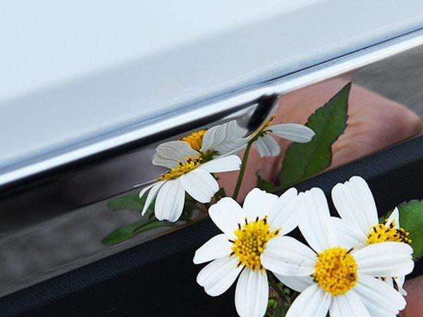 Хром молдинги на двери VW Tiguan II (2016-) 8